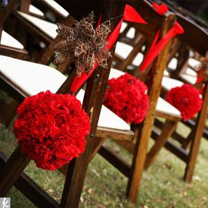 red carntions. very affordable, and again, I loooove the texture they add. great decor.