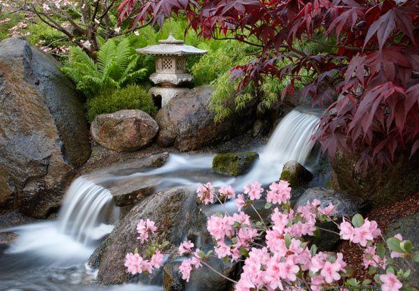 Anderson Gardens, Rockford, IL | Anderson_Gardens_5_16_08_061R2