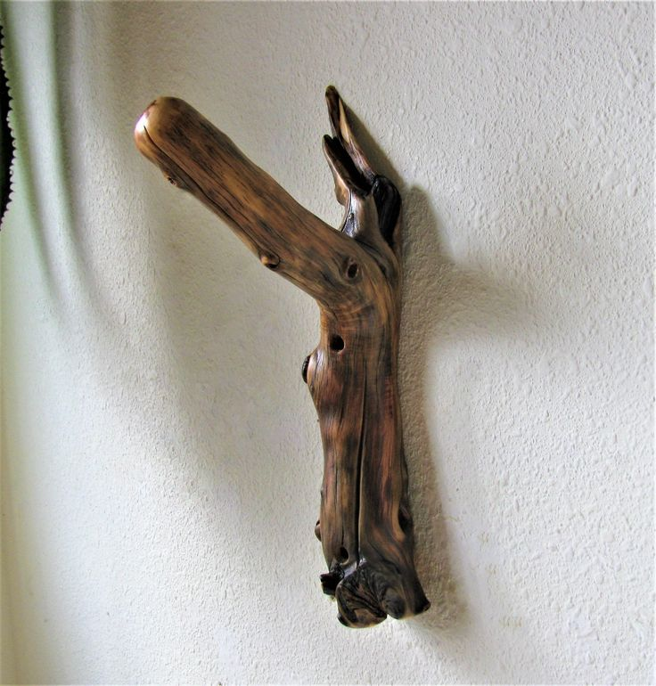 Unique Cottonwood Tree Branch Wall Hook for