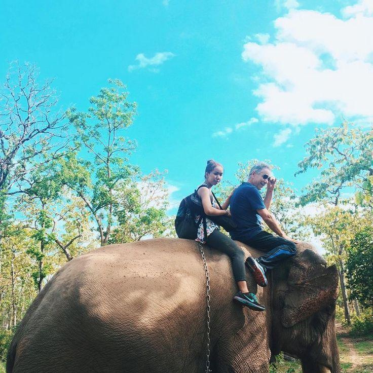 Elephant riding in Buon Ma Thuot, Vietnam.