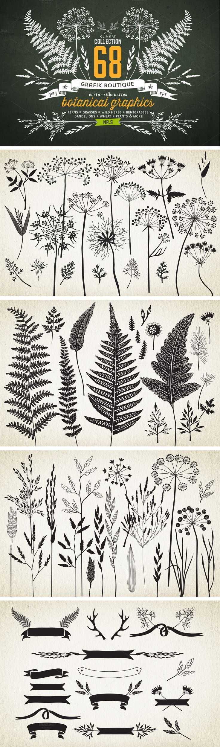 Botanical element illustrations... *IDEA* try printing to give a sense of…