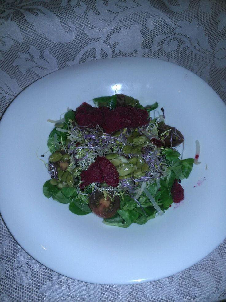 Ensalada de canonigos con germinados, sorbete de remolacha y vinagreta de pipas de calabaza