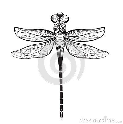 49 best Insect cut outs images on Pinterest | Bugs, Cut outs and Cut ...