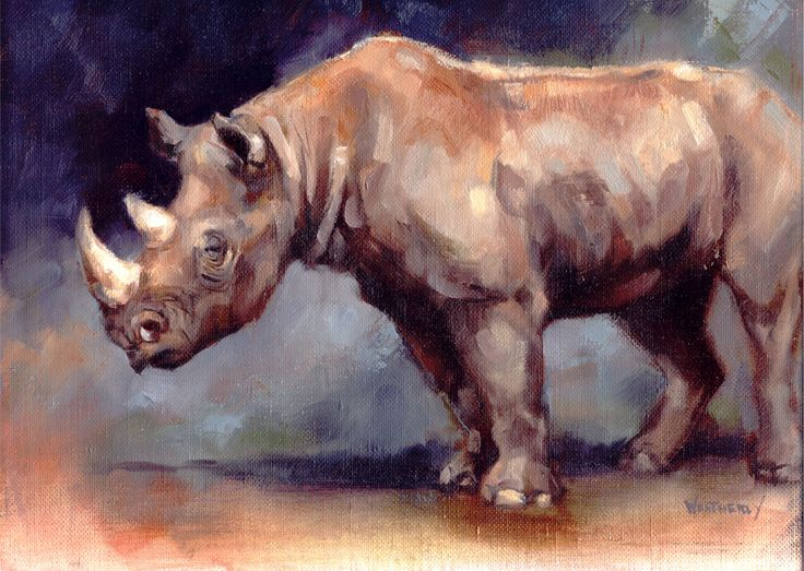 Joe weatherly black rhino oil painting hand drawned for Animal oil paintings