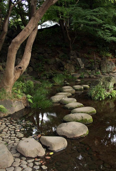 Area of trees that gets a lot of water would be great for large stone path through