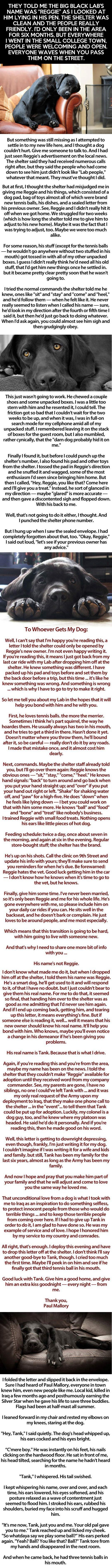 Please take your time out of your life and read this. This is a very cute and sad story, and if it's really true, then I'm happy for the man who adopted the Black Lab, and I think they should make a book/movie out of this.
