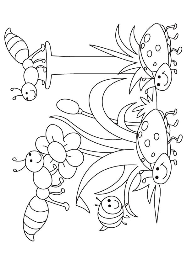 226 Best Spring Coloring Pages Images On Pinterest