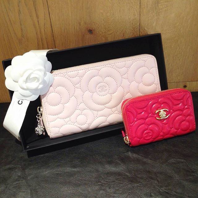 Camelia de CHANEL! ❤(✿ ゚v ゚)🏵💄 #chanel #galleryrare #camelia #wallet #coincase #pink #babypink #ribbon #zip #cute #lovely #feminine #friday #charming #charm #luxury #tokyo #omotesando #useful #color #girly #logo #coco #シャネル #カメリア #財布 #instagood #shopping #swag #flower    Gallery Rare Aoyama Omotesando Store   Call: 0120-916-431 107-0062, Tokyo Minami-Aoyama, Minato-ku, 3-12-10