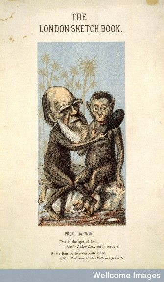 http://thinkingshift.files.wordpress.com/2007/07/l0003760.jpg l0003760.jpgHere's a caricature of poor old Charles Darwin depicted as an ape and holding up a mirror so a fellow ape can catch a glimpse of himself. Image credit: Wellcome Library, London.