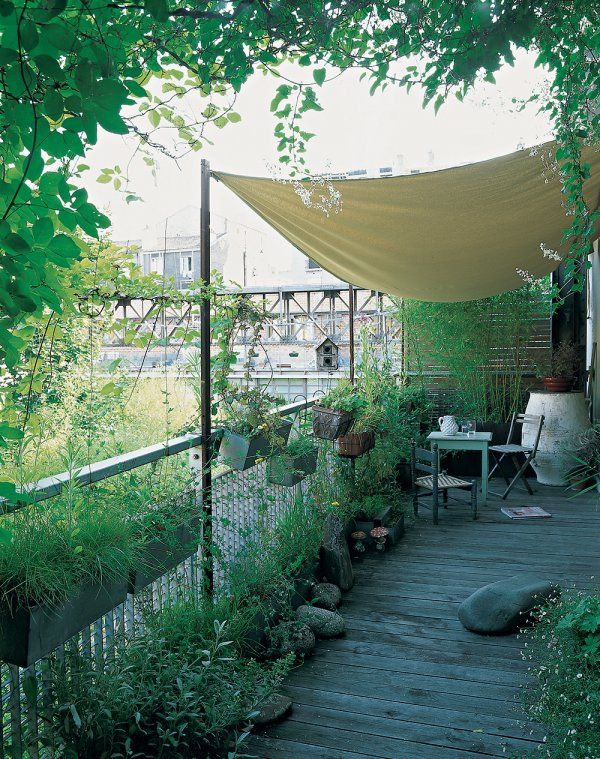 1000 id es sur le th me jardin ombrag sur pinterest jardin ombrag plantes d 39 ombre et. Black Bedroom Furniture Sets. Home Design Ideas