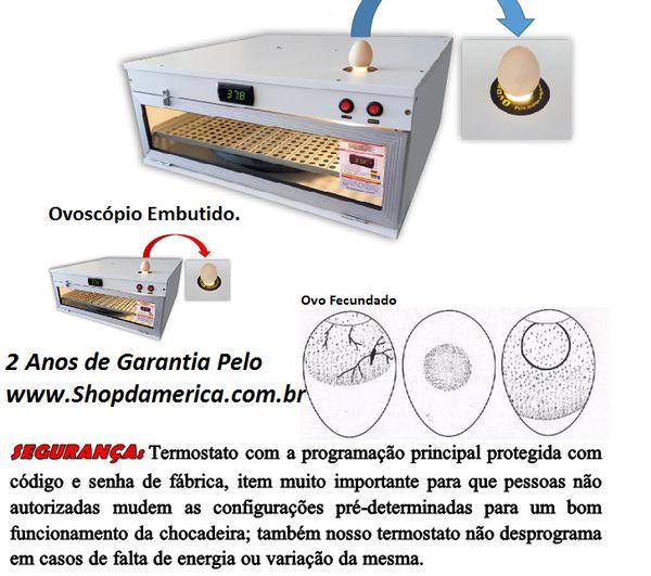 Chocadeira Ovos-Galinha Caipira de Raça-Com Ovoscópio  www.shopdamerica.com.br