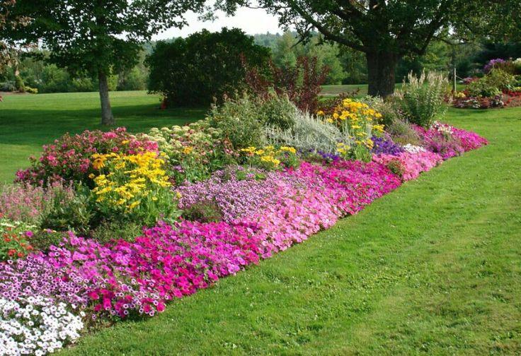 Big Empty Backyard :  Jo Anns yard on Pinterest  Shade garden, Plants and Bird houses
