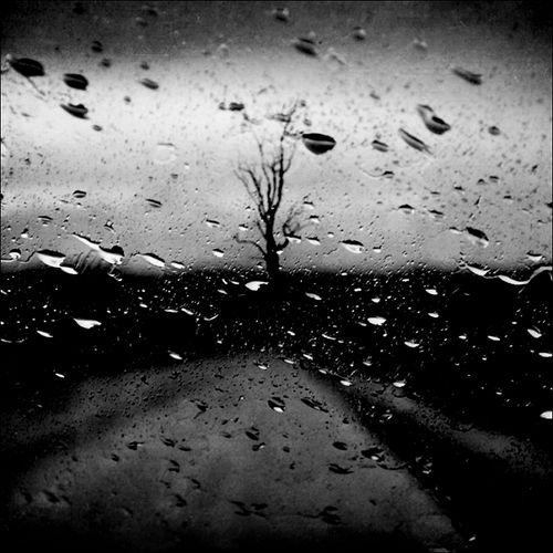 Rain Without End|Leda Siloto
