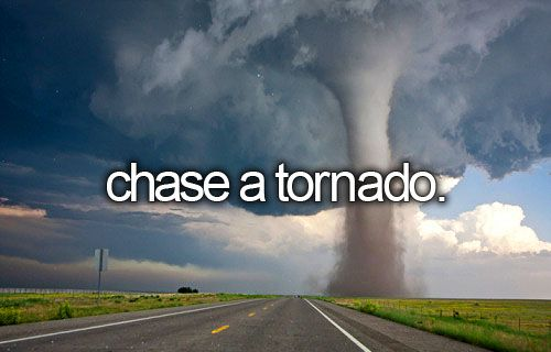 After all, I have watched Twister about 500 times, which I think makes me qualified...