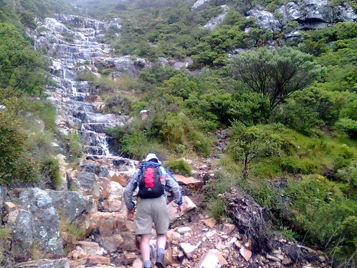 Half Day Table Mountain Hiking