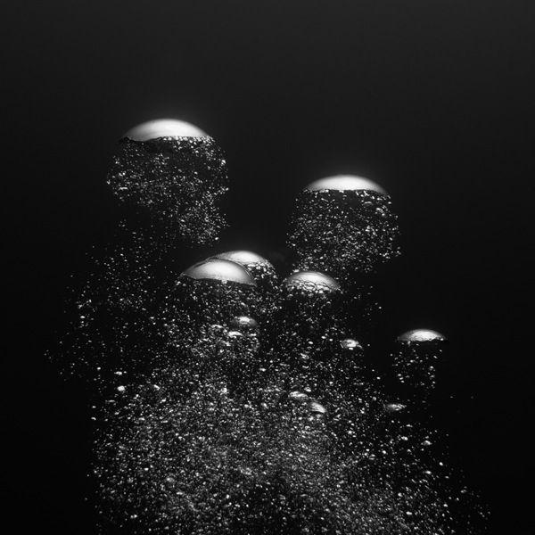 Sous l'eau en noir et blanc