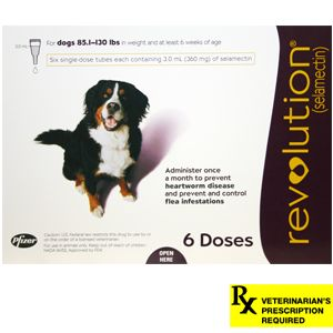 Revolution for Dogs, Flea Control