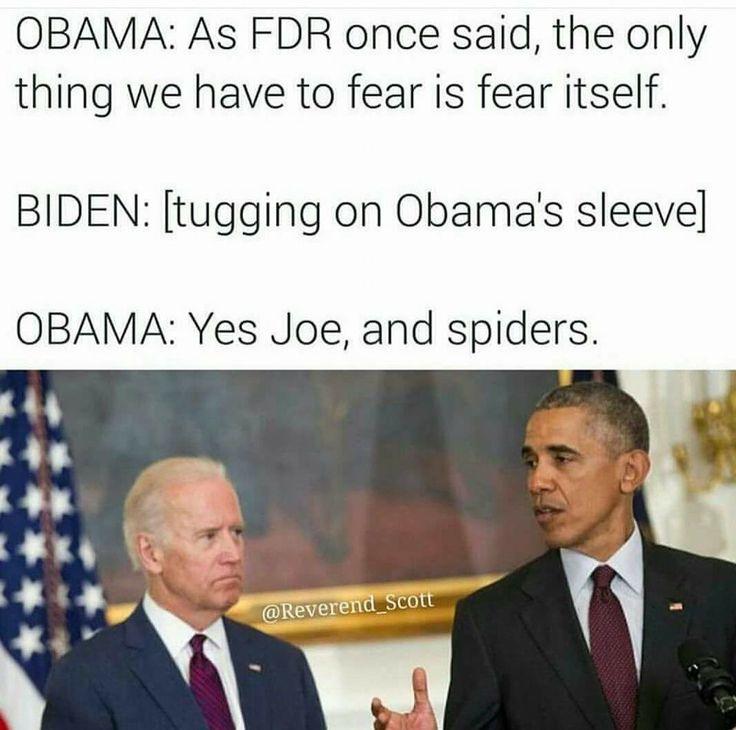 9111250d74e2ee31d18a3b2a4ec1f372 veep quotes spider memes 98 best uncle joe biden images on pinterest funny stuff, biden