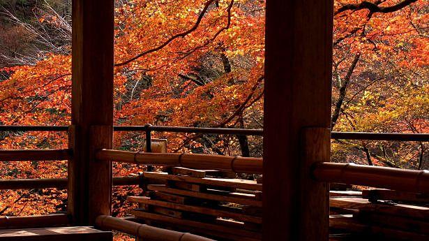 本当は誰にも教えたくないツウな街。秋めく京都で心と身体を癒す旅*|MERY [メリー]