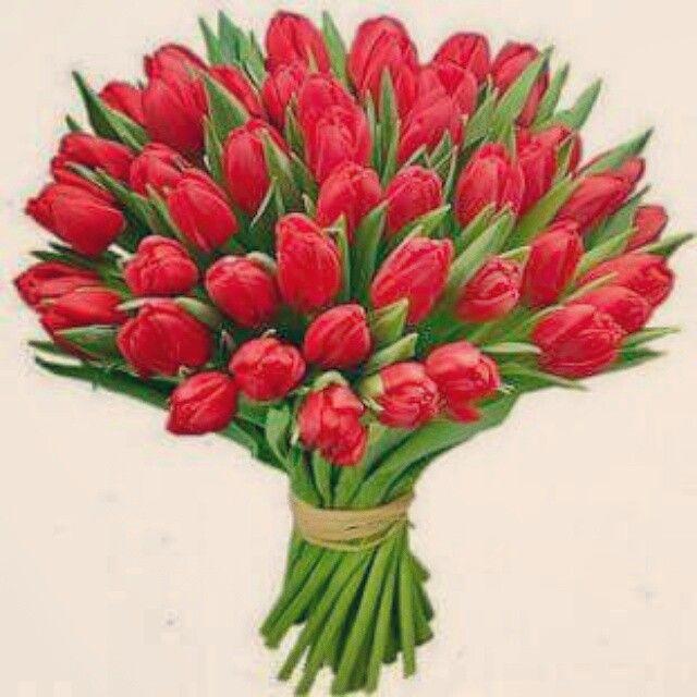 Drogie Panie wszystkiego najlepszego w dniu  Waszego święta życzy zespół  Luly   #Kobieta  #muzyka #pop #girl