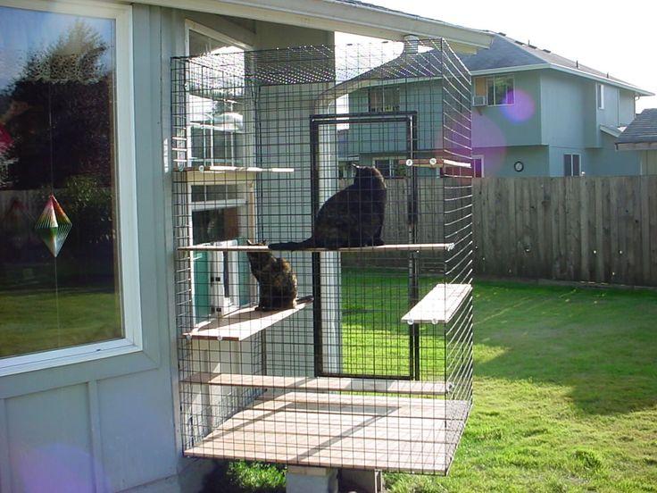 103 best catio images on pinterest cat furniture cat for Having an indoor cat
