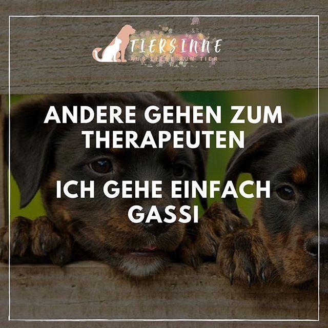 Hundewelt Hundespruche Hundefreunde Hundespruche Hund Zitat Spruche Tiere