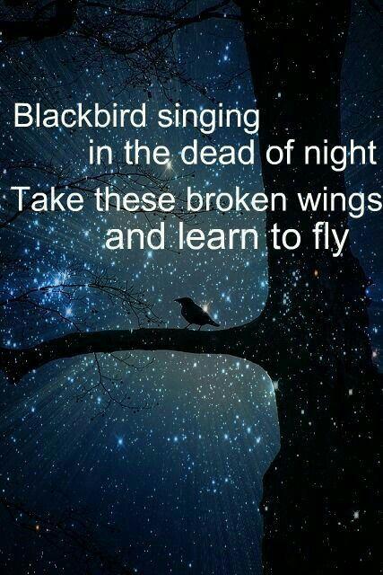 Blackbird · Blackbird LyricsBlackbird ...