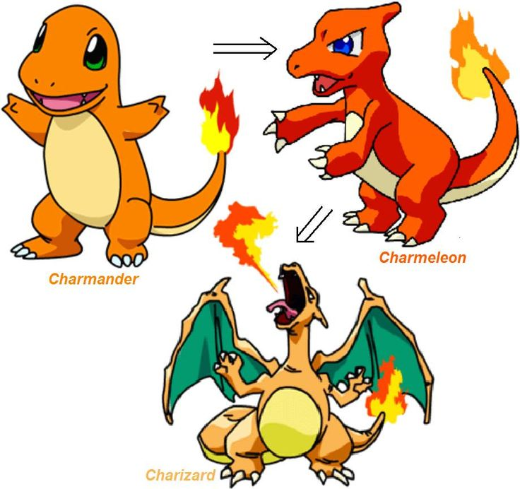 Charmander Evolution