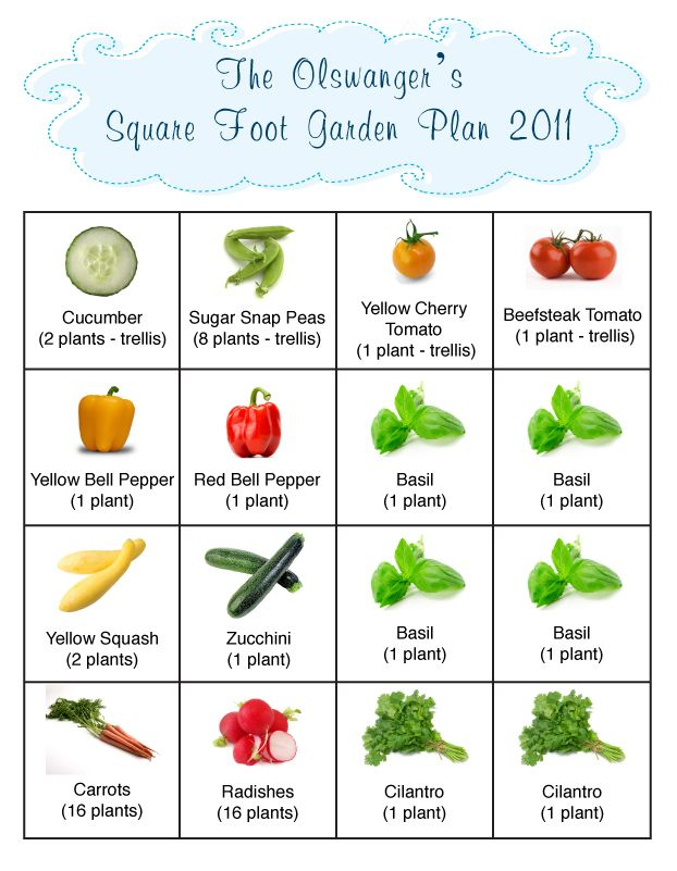 This Was Our Square Foot Gardening Plan For 2011 We Have