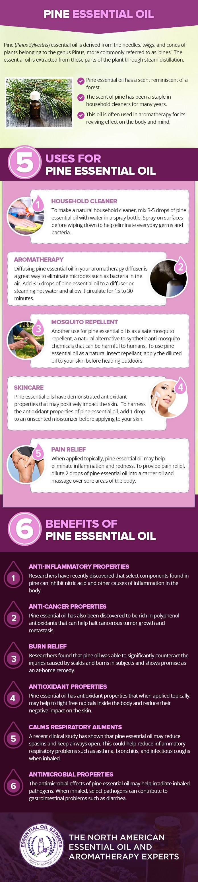 Pine Essential Oil Uses & Benefits