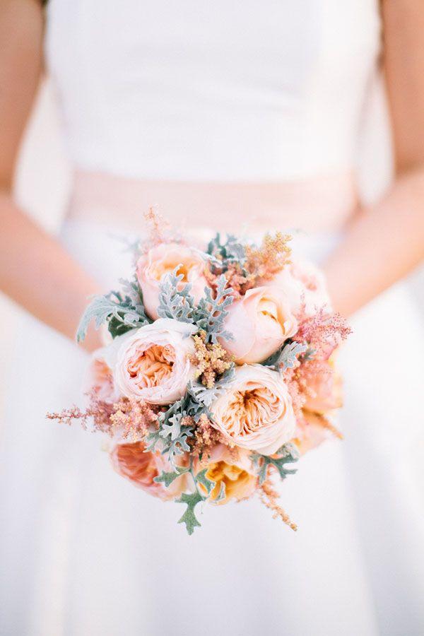 david austin roses bouquet   bouquet con rose juliet e cineraria marittima