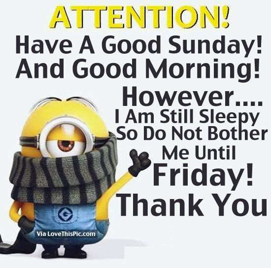 Attention! Have A Good Sunday And Good Morning! good morning sunday sunday quotes good morning quotes happy sunday minion quotes good morning sunday quotes happy sunday morning sunday morning facebook quotes sunday image quotes happy sunday good morning sunday morning minion quotes