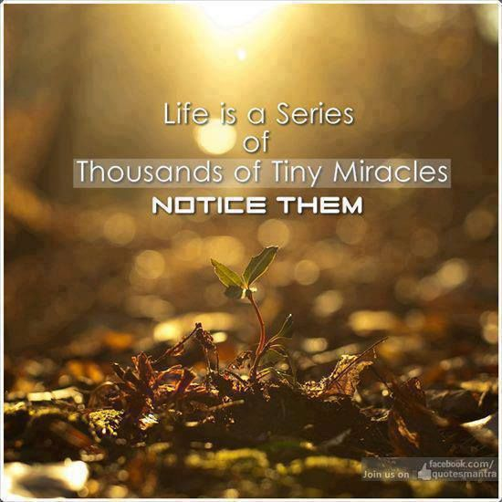 Life is a series of thousands of tiny miracles .. Notice them ..