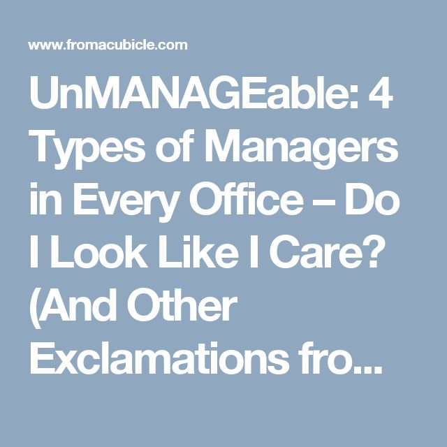 UnMANAGEable: 4 Types of Managers in Every Office – Do I Look Like I Care? (And Other Exclamations from My Cubicle)
