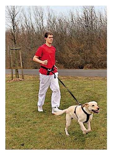 Waist-Dog-Lead-Belt-Leash-Running-Jogging-Leash-Extendable-Handsfree-Pet-Outdoor