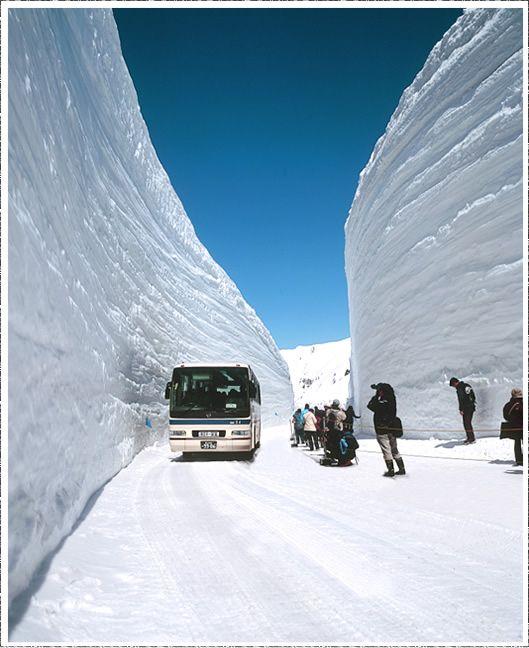雪の大谷を楽しむ   楽しみ方ナビゲート   立山黒部アルペンルート