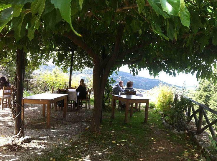 Taverna Rizinia – Zourva, Crete