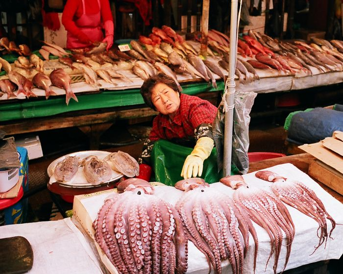 17 best images about i like fish markets on pinterest for Milan food market
