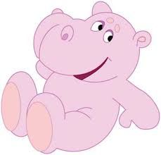 hipopotama