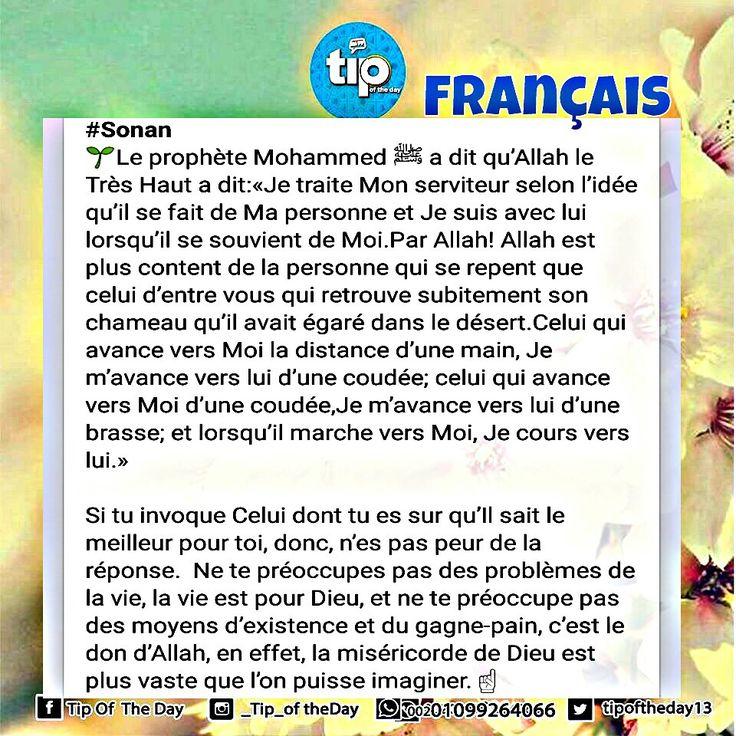 #sonan #prophète_muhammad #français #allah