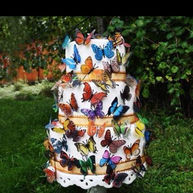 Butterfly Cake Bdays Pinterest Butterfly Cakes My