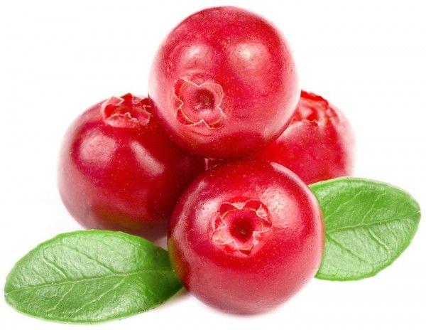 Клюква является одной из наиболее полезных ягод для человеческого организма.