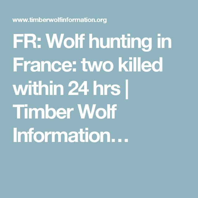 FR: Wolf hunting in France: two killed within 24 hrs | Timber Wolf Information…