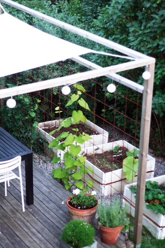 Cool covered patio with potential privacy trellis.