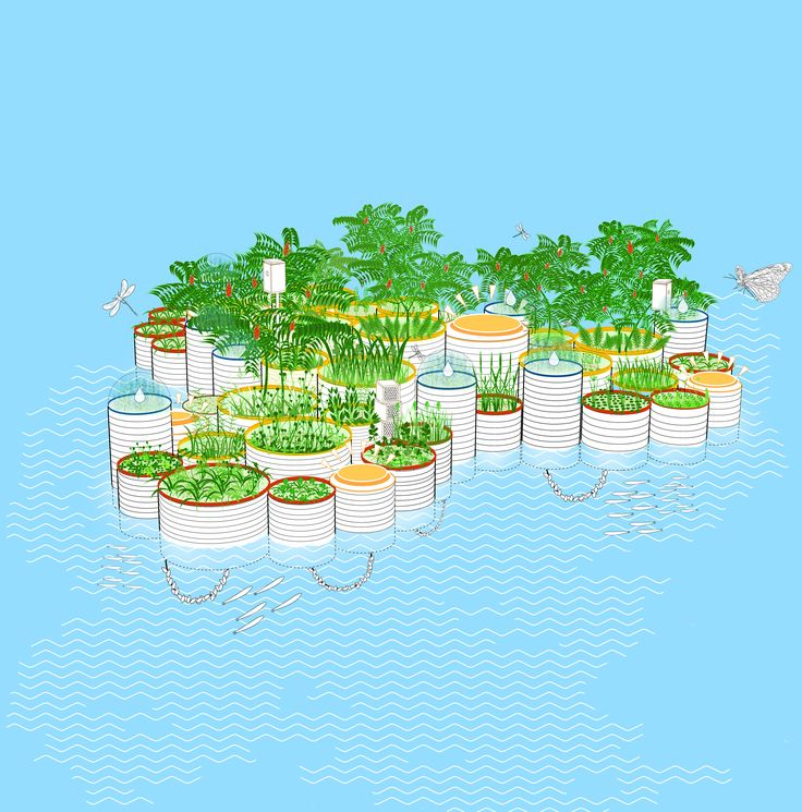 Testing The Waters: How Floating Gardens Could Solve Our Biggest Environmental Challenges - Garden Collage