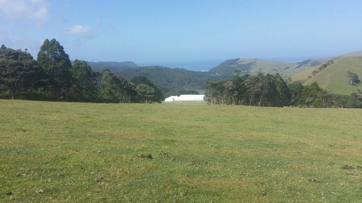 An incredible view for Ina's wedding.  For more info go to topcover.co.nz