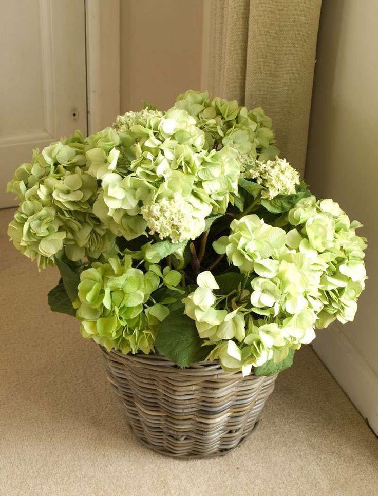 Best hydrangea bouquet images on pinterest wedding