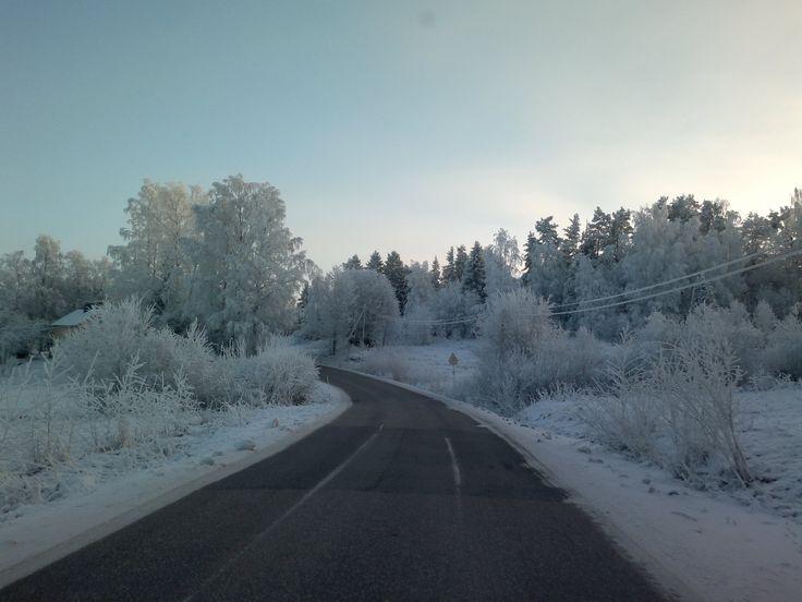 Poikkeuksellinen hetki talven 2014 ajalta, lumettunut pakkasilmiö edessä!