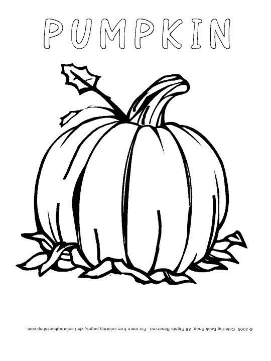 Best 20 Pumpkin coloring pages ideas on Pinterest Pumpkin