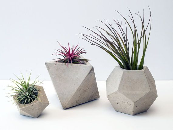 Concrete Geometric Set of 3 Planters / Plant Pots (plants included)